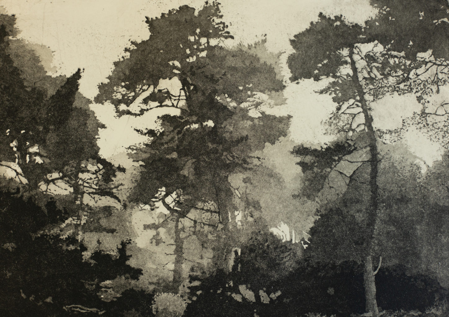 "Michael O'Shea, aquatint, etching, 8"" x 11"" 2019"