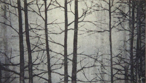 Linda Yoshizawa, The Woods Beyond, Solarplate etching, 6 x 10 in, 2017