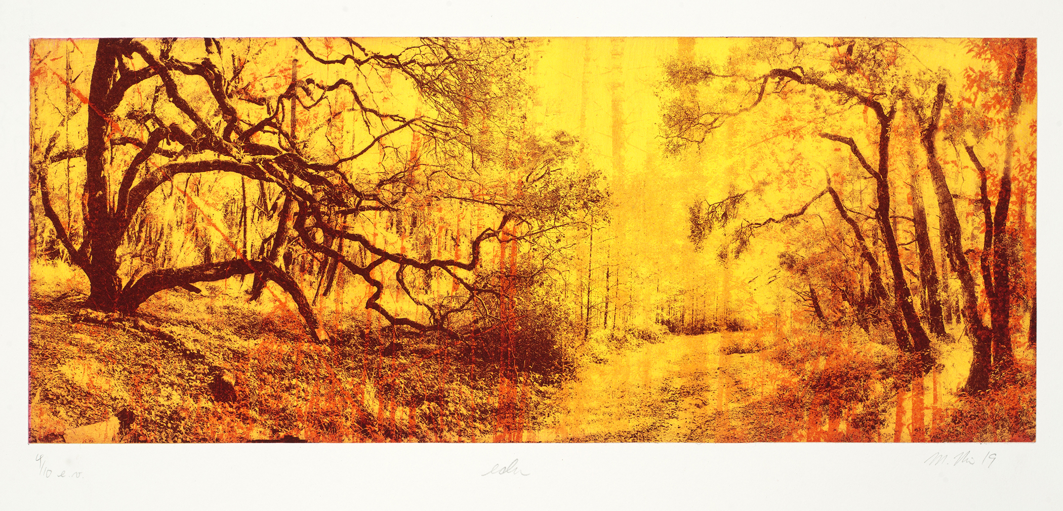 Margaret Niven, Eden 4 of 10, photo polymer intaglio chine collé and chalk pastel, 15 x 30 in, 2021