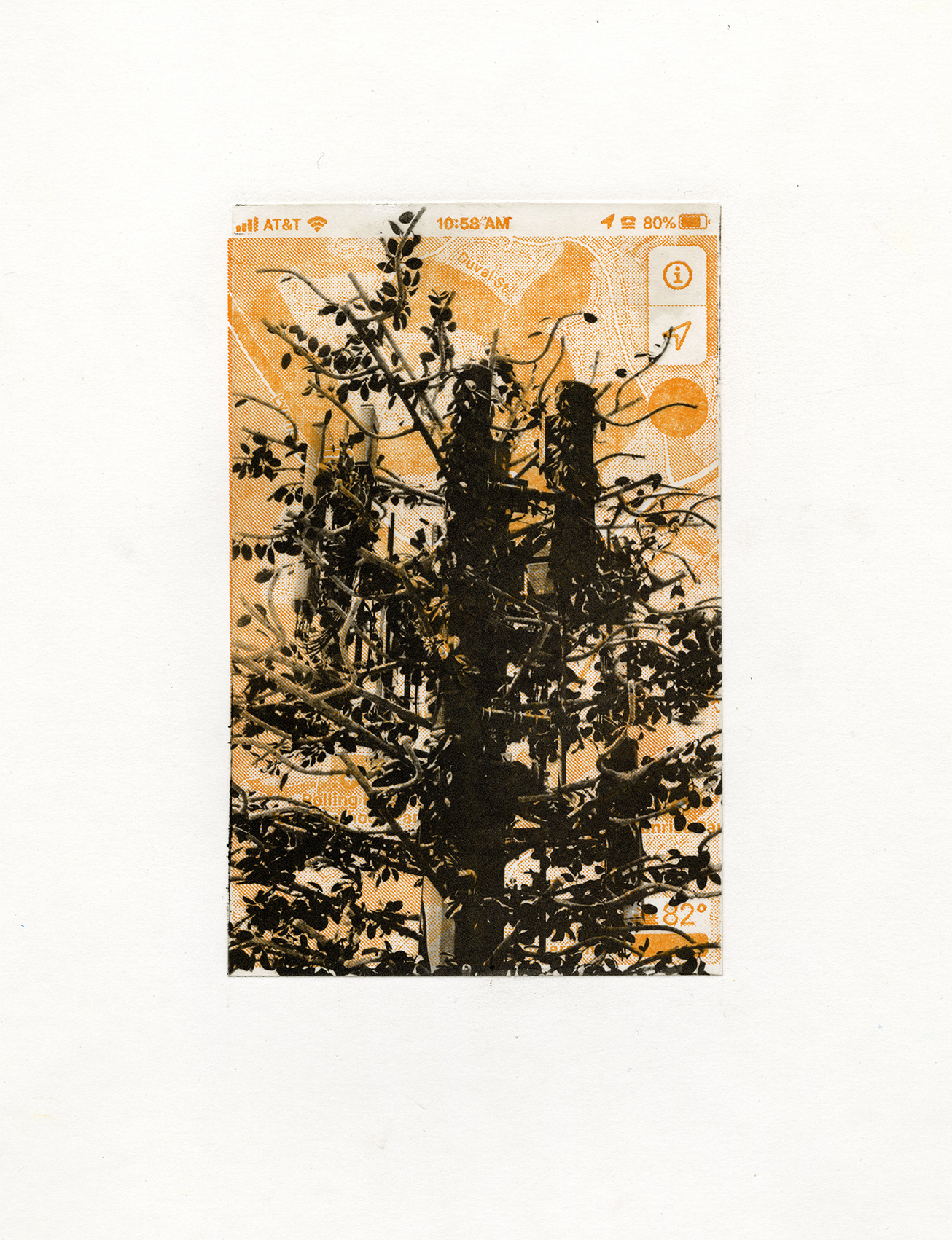Mary V Marsh, here hear Valley Oak map, photopolymer gravure and letterpress, 15 x 11 in, 2020