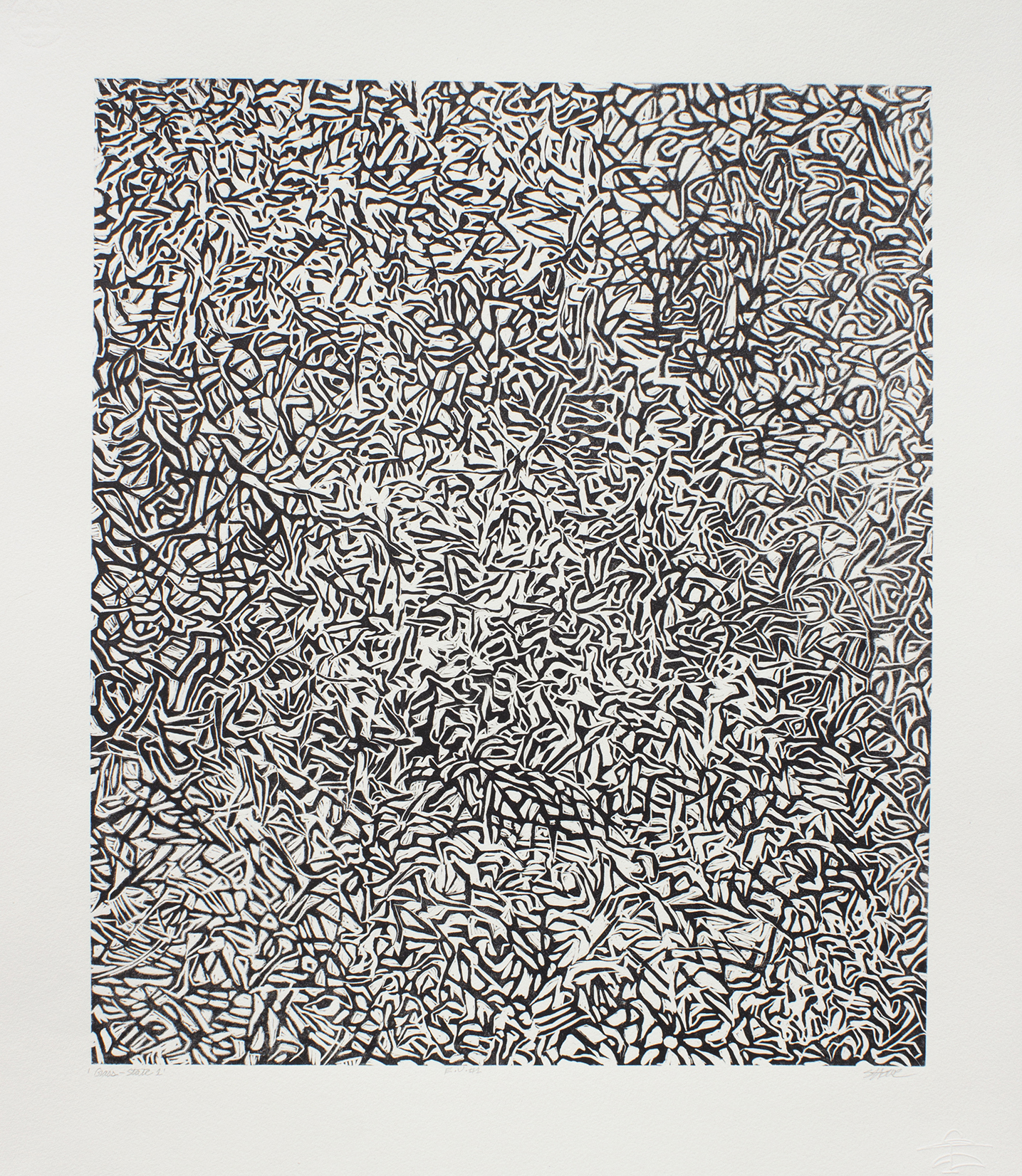 Susan Leone Howe, Grass State no.1, woodcut, 20.5 x 17 in, 2015